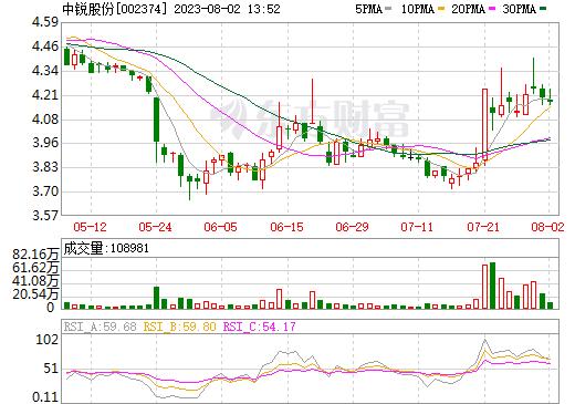 丽鹏股份(002374)