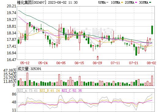 雅化集团(002497)