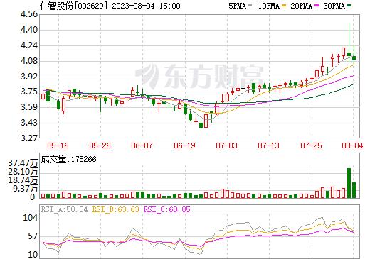 仁智股份(002629)