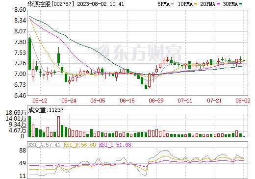 华源控股(002787)