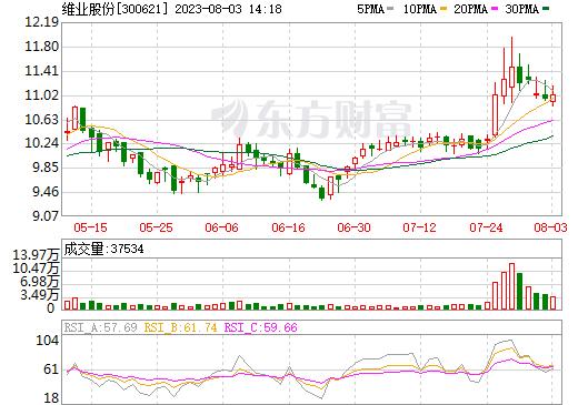 维业股份(300621)