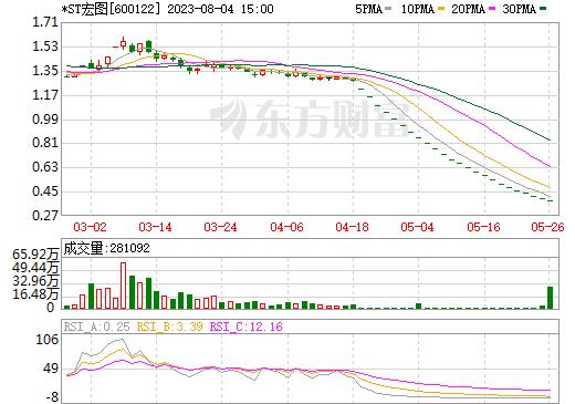 宏图高科(600122)