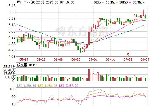 紫江企业(600210)