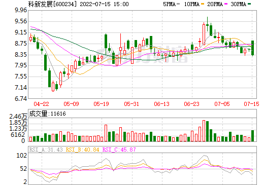 ST山水(600234)