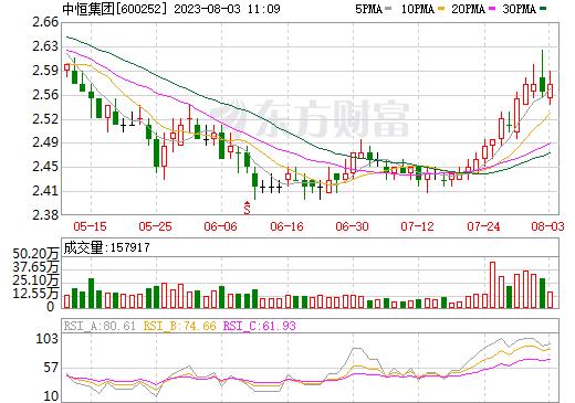 中恒集团(600252)