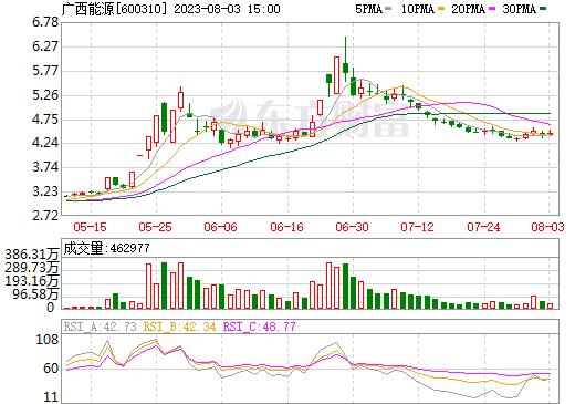 桂东电力(600310)