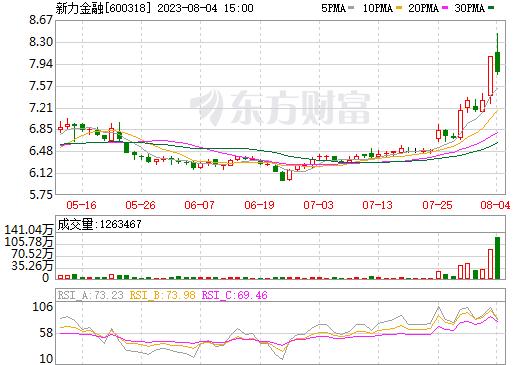 新力金融(600318)