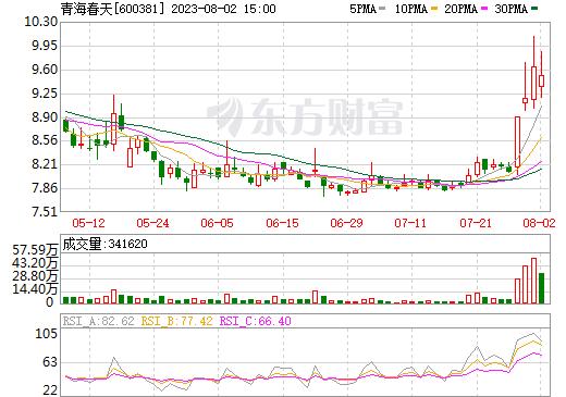青海春天(600381)