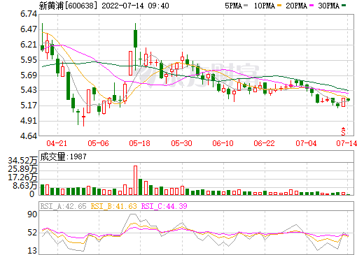 新黄浦(600638)