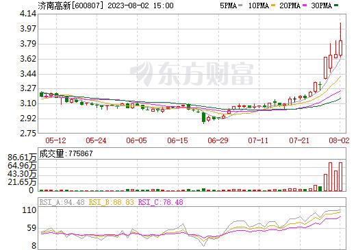 天业股份(600807)