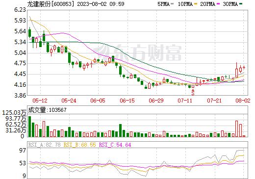 龙建股份(600853)