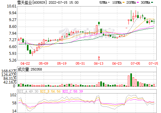 湖南盐业(600929)