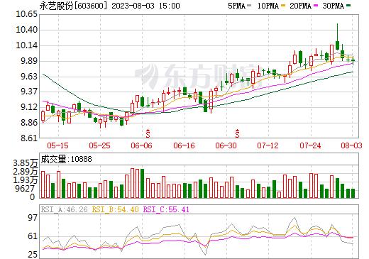 永艺股份(603600)