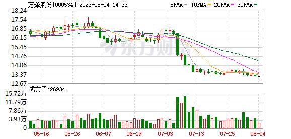 万泽股份(000534)龙虎榜数据(09-12)