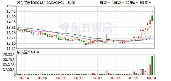 锦龙股份股票 锦龙股份(000712)融资融券信息(10-14)