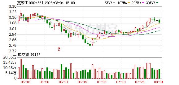 嘉麟杰(002486)龙虎榜数据(09-12)