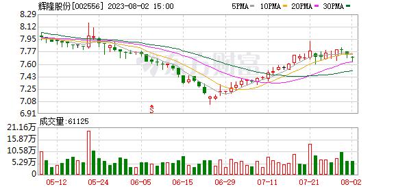 辉隆股份(002556)龙虎榜数据(09-02)