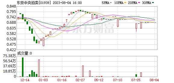 东京中央拍卖(01939.HK)有限公司任命郭伟为公司审计师